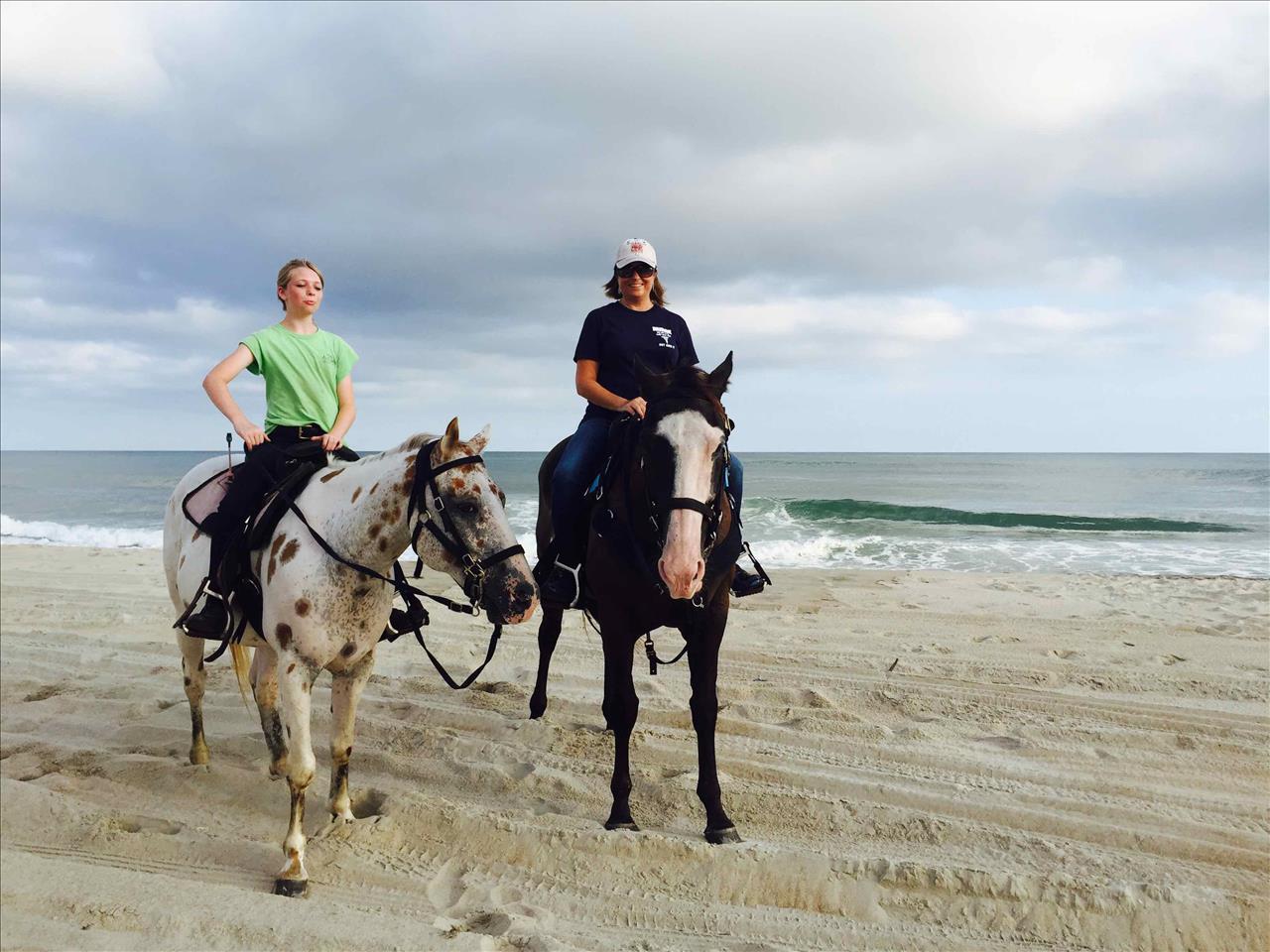 August 2015 Stay - VP204 - Seascape Escape, Lisa Ness